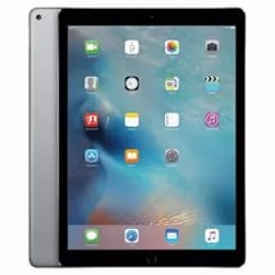 Apple iPad Pro 12.9 Wi-Fi 256GB Space Gray (ML0T2)